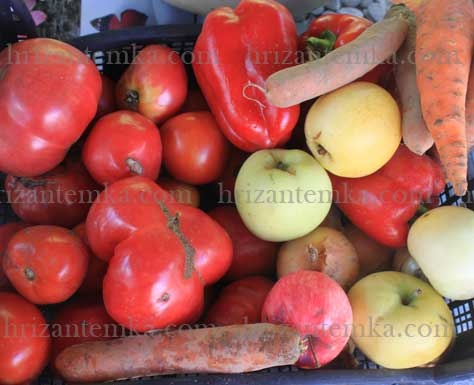 Домашня аджика із помідорів