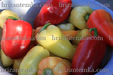 Маринований болгарський перець
